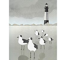 Seagulls Lighthouse Photographic Print