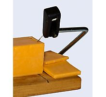 Sliced Cheese Photographic Print