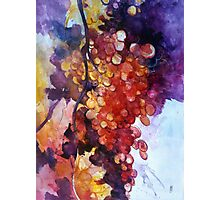The big grape Photographic Print