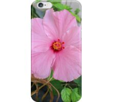 Tropical Pink Flower iPhone Case/Skin