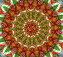 Fruit and Vegetable Colored Kaleidoscope by taiche