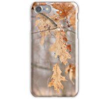 Combo of Seasons iPhone Case/Skin
