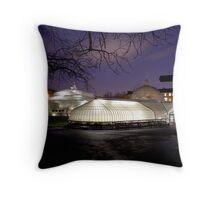 Glasshouse Throw Pillow