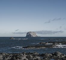 Bass Rock by Luke Griffiths
