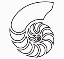 Nautilus Outline by lucid-reality