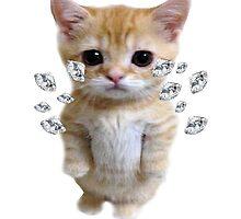 Diamond Kitty by kaidanshepard