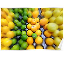 Citrus Medley Poster