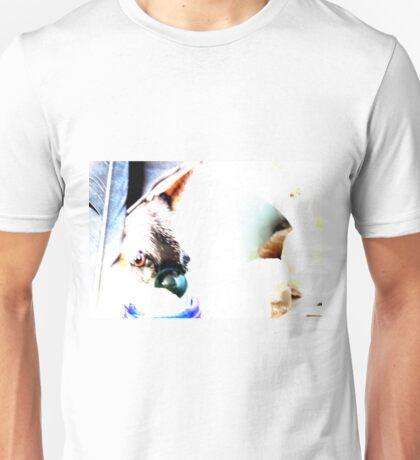Cani vette' Unisex T-Shirt