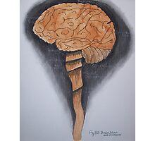 Brain, Lobes And All Photographic Print