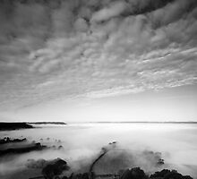 Sea of Fog by Anne Gilbert