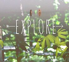 Explore by Lauren Wittmann