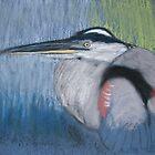 Blue heron by victorgroza