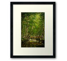 Park Natural serra Estrela - Portugal  Framed Print