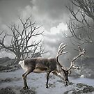 Reindeer Feeding by Lisa  Weber