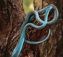 Tree Snake by Karen Duffy