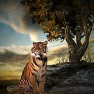 Tigers View by Lisa  Weber