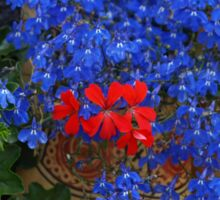 Wooden Shoe Flower Planters Netherlands Sticker