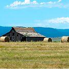 Prairie Barn by Mary Carol Story