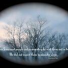 Mark 6:7: by DreamCatcher/ Kyrah