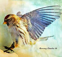 Flight I by Bunny Clarke