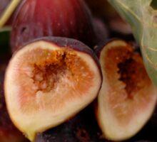 Figs In A Bowl Sticker