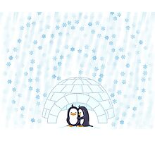Penguins In Igloo While Snowing Art Photographic Print