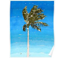 Palm Tree In Wind Poster