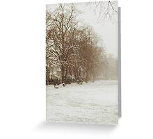 Snow in Kingston park Greeting Card