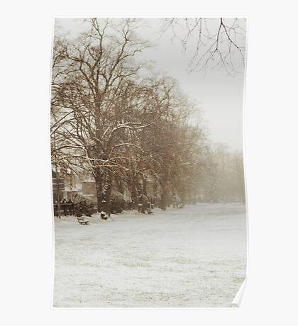 Snow in Kingston park Poster