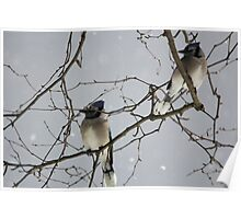 Mystical Birds Poster
