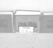 Holy Bible by Valentino Visentini