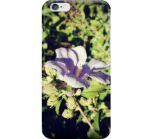 Campanula Flower iPhone Case/Skin