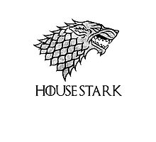 House Stark Pocket Design Photographic Print