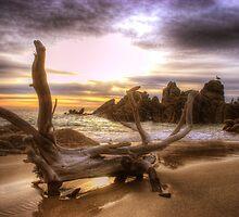 Cabo Sunrise by Bruce Taylor