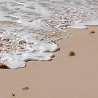 Bermuda Beach Foam 3 by triciamary