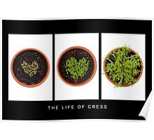 Life of Cress Poster