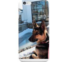 German Shepard Awaits Owner iPhone Case/Skin