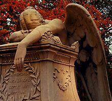 Weeping Angel by Kerri Ann Crau