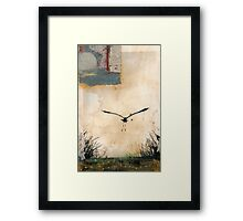 Pelican Into The Sun Framed Print