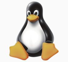 Linux Tux by unix
