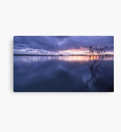 Southern Moreton Bay, Qld Canvas Print