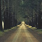 Endless Country road  by Ness4x4