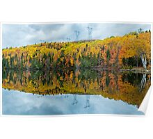 Beautiful reflections of a autumn forest  Poster