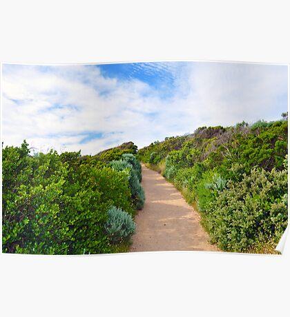 Beach Path Landscape Poster