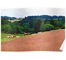 Countryside Cattle Farm Poster