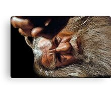 So Small a Thing Canvas Print