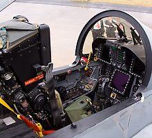 RAAF F/A Hornet Fighter Cockpit by stevealder