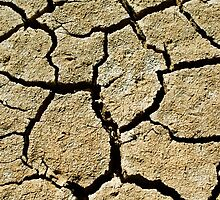 Cracked soil  by carloscastilla