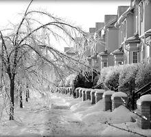 Frozen Suburbia by Valentino Visentini