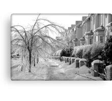 Frozen Suburbia Canvas Print